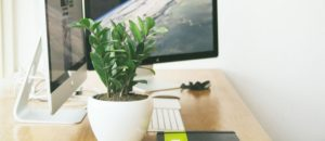 Amalina Zakaria Web Design & Development   With DIY Free Websites, Why Should I Hire a Webdesigner? 4